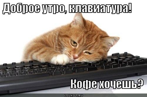 Сьогодні в Україні стартує кампанія з вибору лікаря первинної медичної допомоги - Цензор.НЕТ 6682