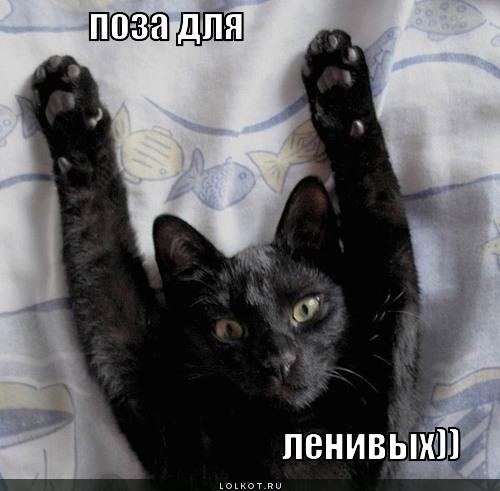 поза для ленивых))