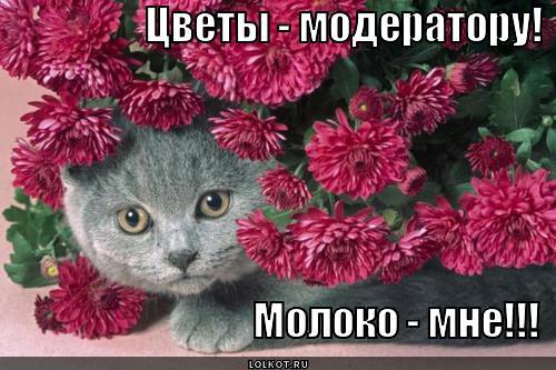 цветы - модератору