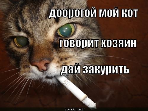 дай закурить