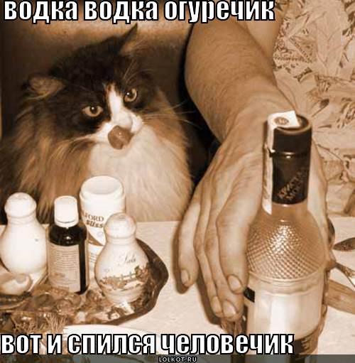 водка водка огуречик
