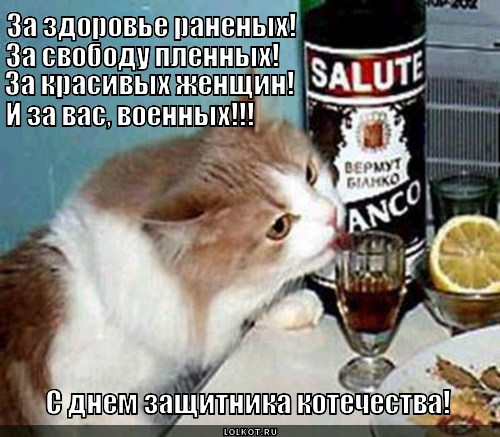 с днем защитника Котечества