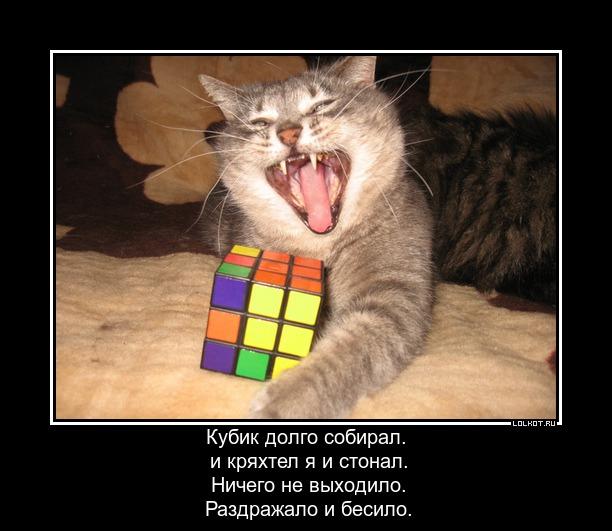 Этому бы Рубику, всюду бы по кубику.