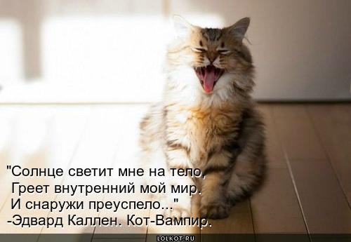из журнала кота-вампира