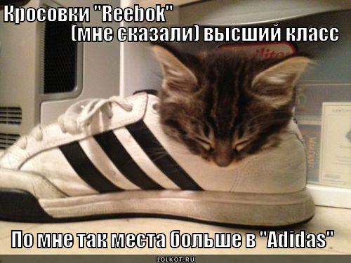 люблю поспать в кросовках