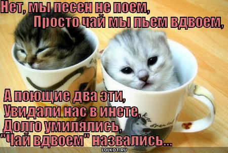 В чае вдвоём.