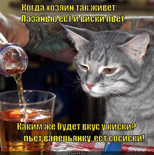 Виски, сосиски... киски.