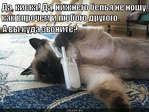 Аллё! Ларису Ивановну хочу.