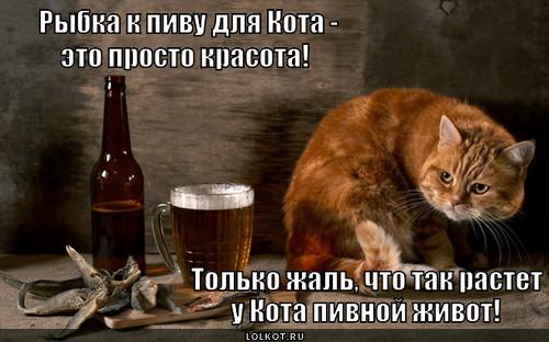 Васик-попивасик.