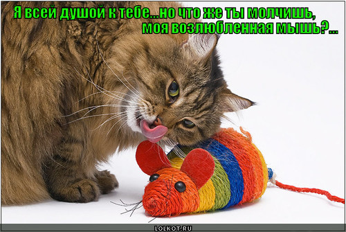 возлюбленная мышь
