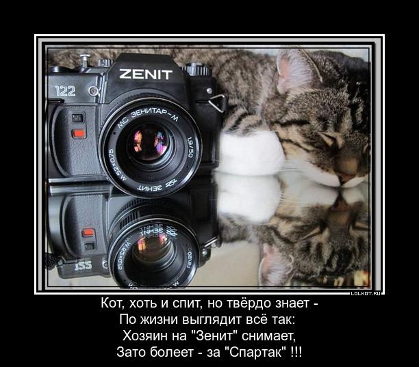 Зенит - Спартак.