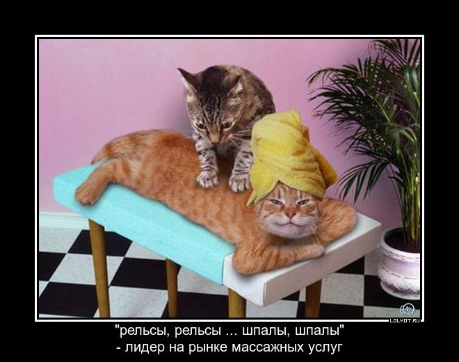 проф.массаж на дому