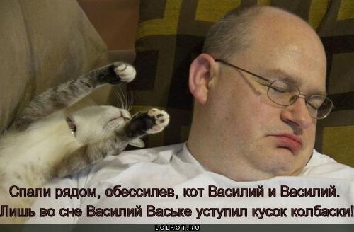 Василии снили