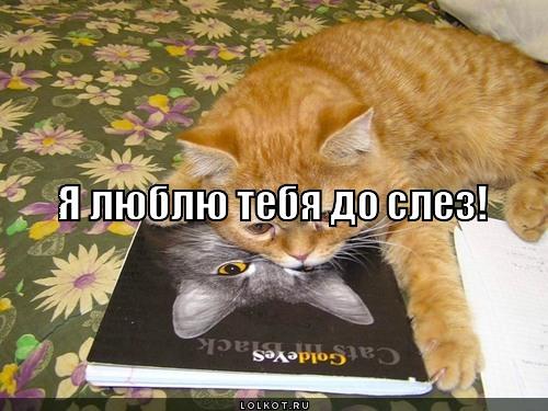 я люблю тебя до слез!