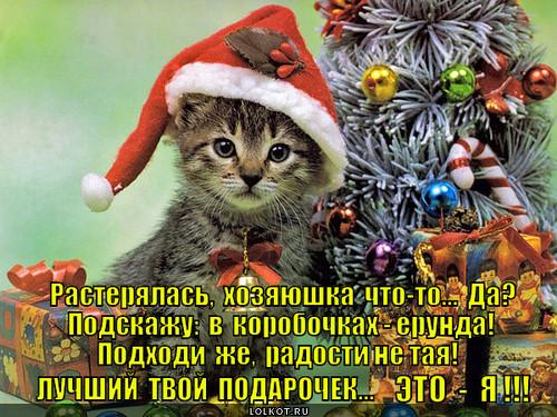 Лучший мой подарочек - это ты!