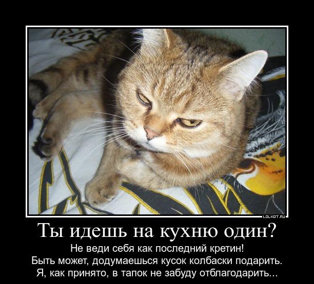 pososi-u-menya-pozhaluysta-foto