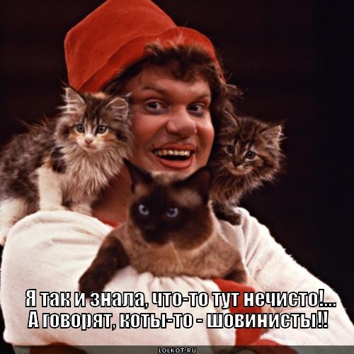 Коты шовинисты?!