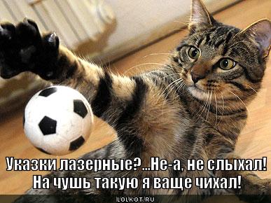 Любитель мячиков