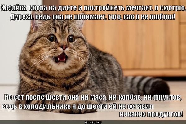 Диетолог, е-мое!
