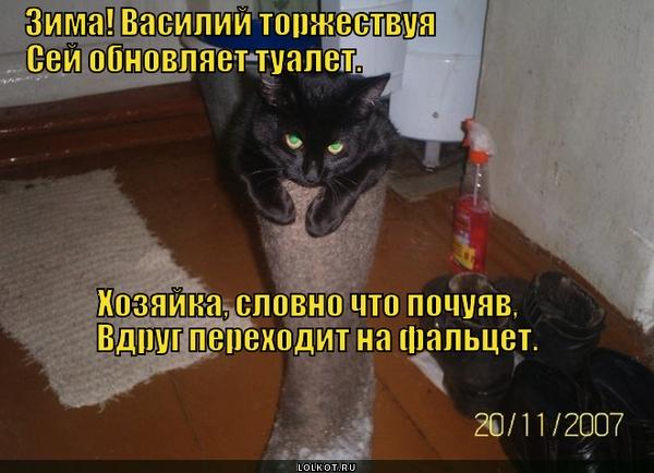 Чую, чую кошачьим духом пахнет!
