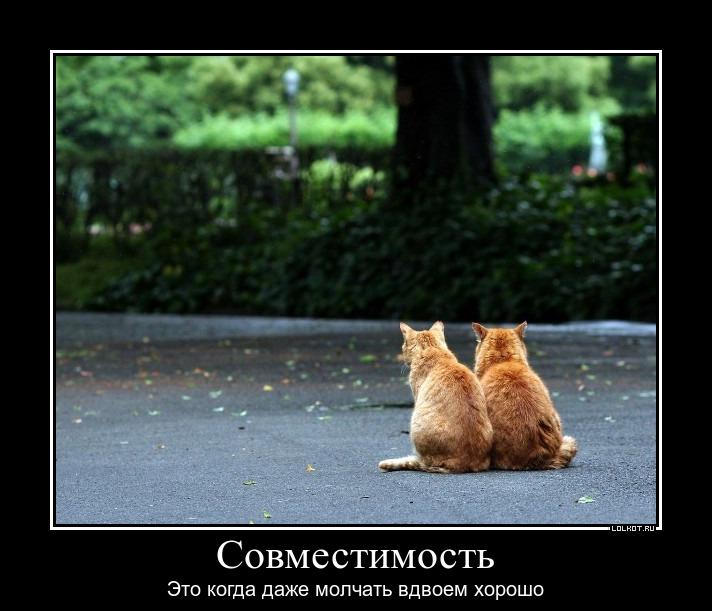 Вместе и молчать хорошо