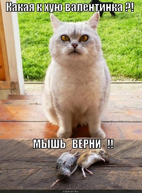 итить, нашу мышь