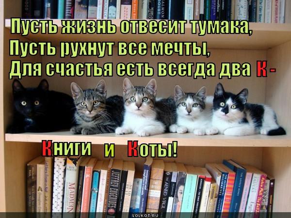 Книги и коты