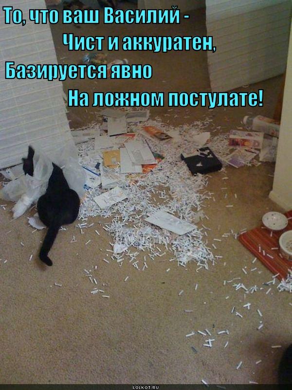 Кошачьи постулаты