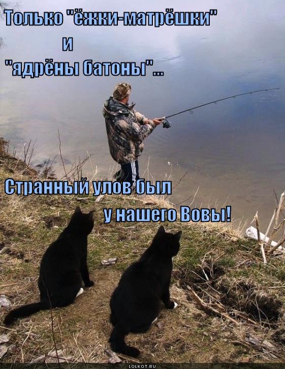Рыба разных видов