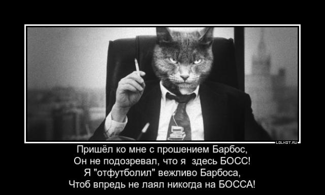 Начальник