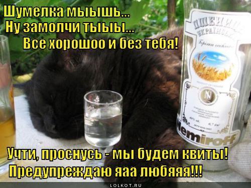 Администрация сайта предупреждает: алкоголь опасен для вашего здоровья в любых количествах!