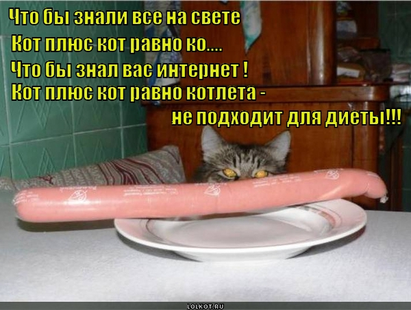 Котлета и диета