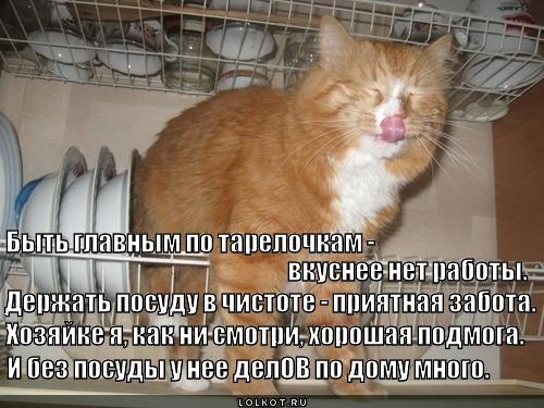 Работник по облизыванию посуды