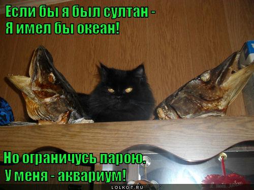 Рыбный султан