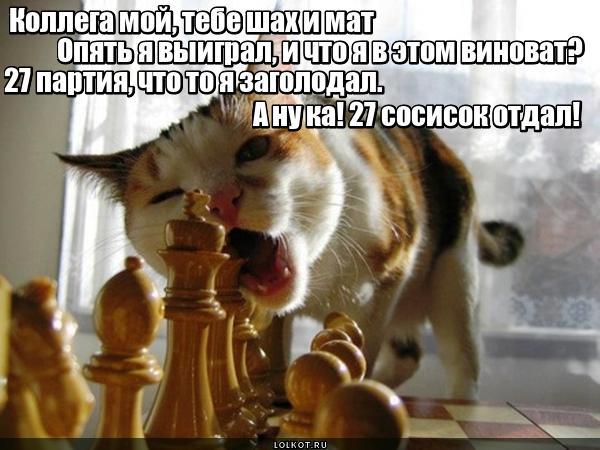 Голодный гроссмейстер