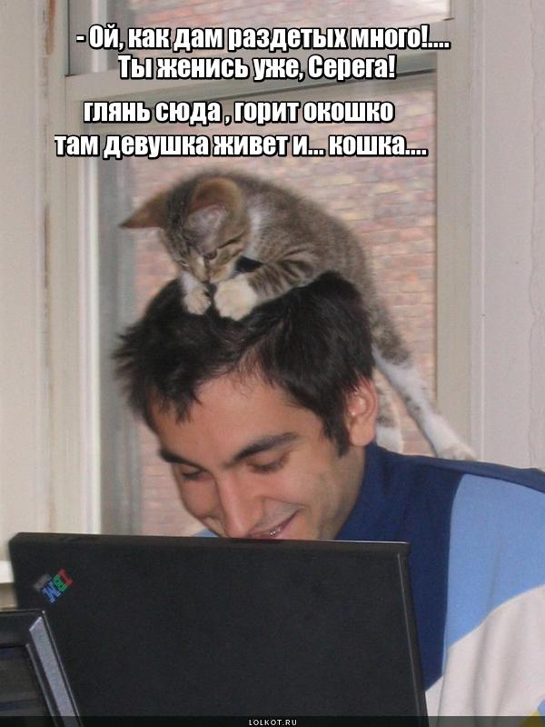 Киски в интернете