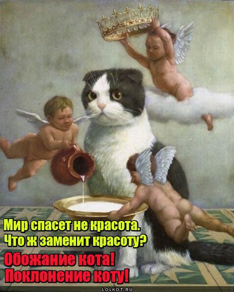Кот спасет мир