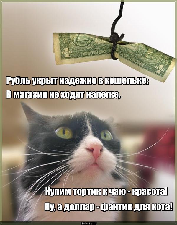 Фантик для кота