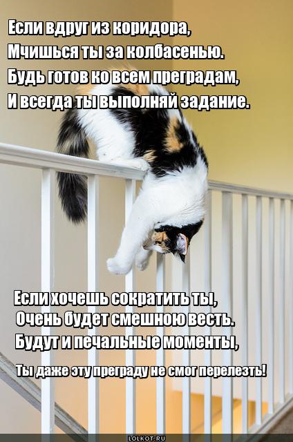 Если вдруг из коридора...