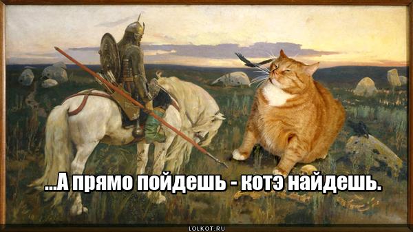 Сказка про котэ