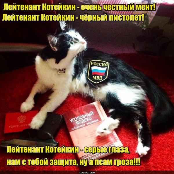 Лейтенант Котейкин
