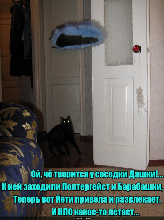 Анекдот: Сегодня ночью у меня дома похозяйничал Барабашка…