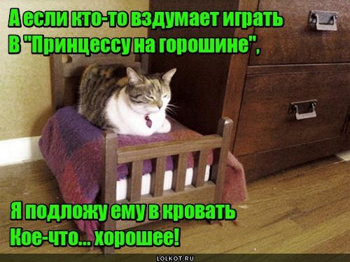 Ремейк сказки по-кошачьи