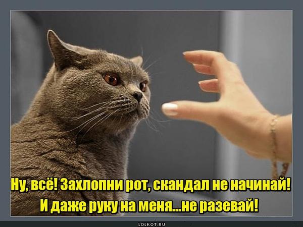 Закрой руку!