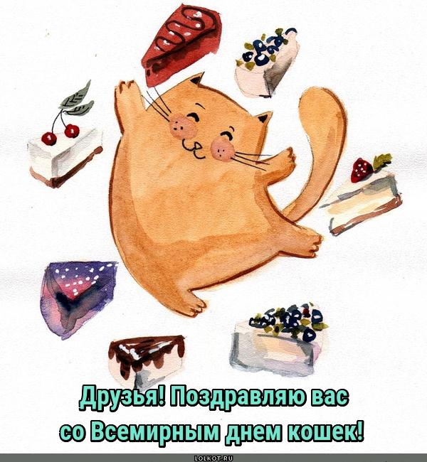 Поздравляю со всемирным днем кошек!