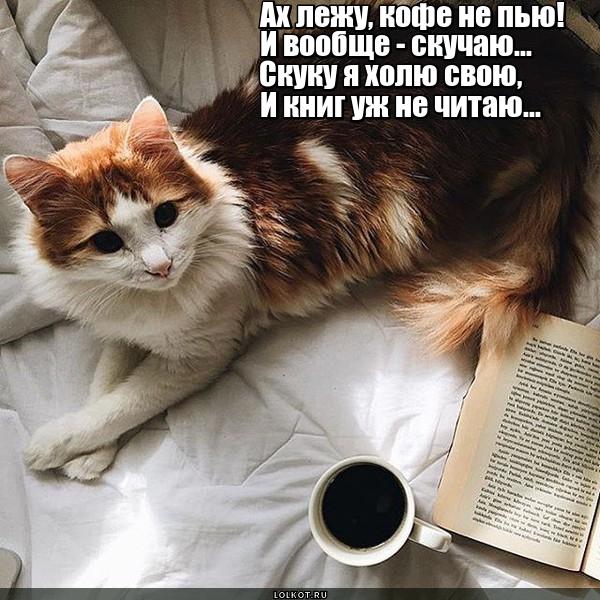 Кофейный сплин