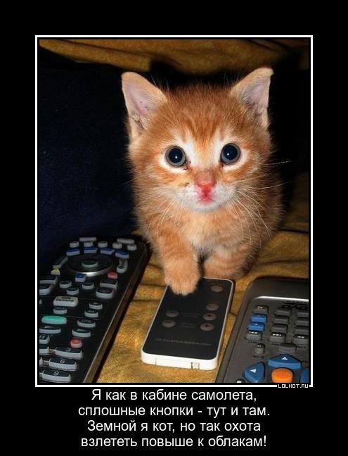 Котчик-испытатель