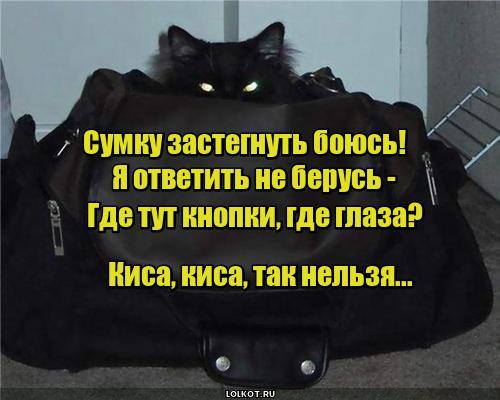 Страшная сумка
