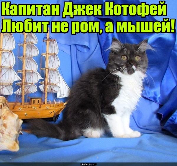 Капитан Джек Котофей