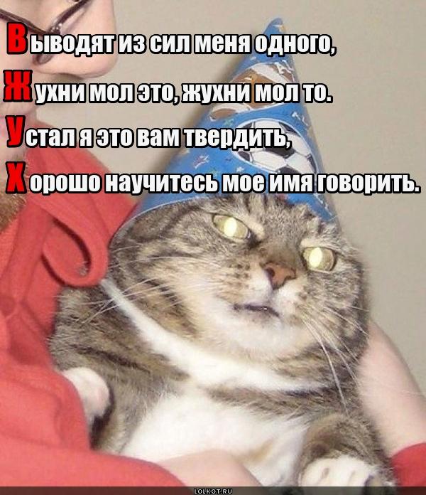 Сердитый Вжух